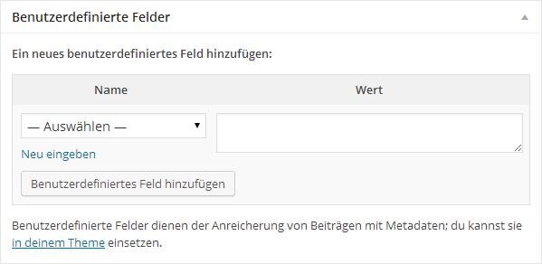 wordpress-eingabemaske-benutzerdefinierte-felder